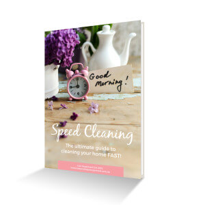 Speed cleaning cover ebook