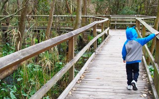 The Top 3 things to do with kids on Sydney's Northern Beaches